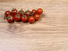 Free Little Tomatoes Stock Images - 14107024