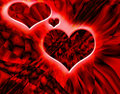 Free Heart Stock Photos - 14113113