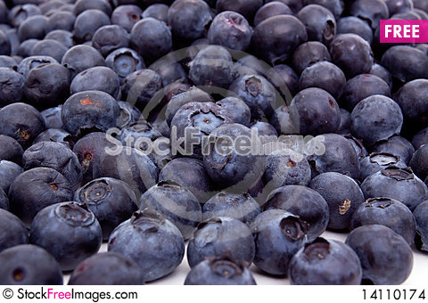 Free Fresh Blueberries Stock Images - 14110174