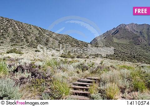 Free Sierra Nevadas Stock Images - 14110574