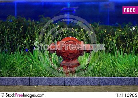 Free Hydrant Royalty Free Stock Photo - 14110905