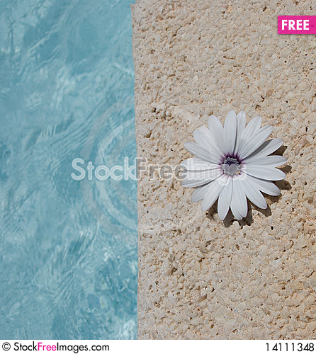 Free Split-image Royalty Free Stock Photos - 14111348