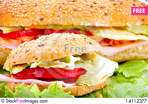Free Round Sandwich Royalty Free Stock Photography - 14112377