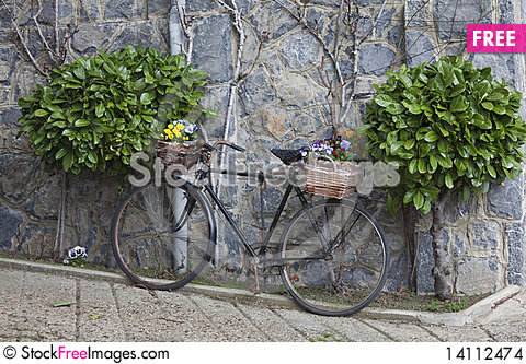 Free Decorated Bike Stock Images - 14112474