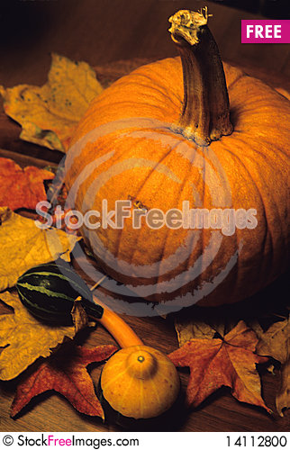 Free Pumpkin And Leaves Stock Photo - 14112800