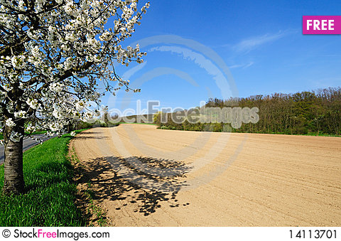 Picturesque view of plowed field Stock Photo