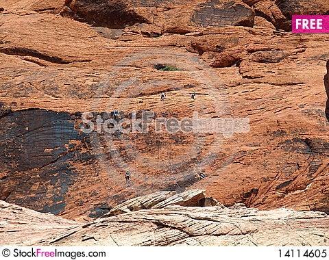 Free Cliff Climbing Royalty Free Stock Photo - 14114605