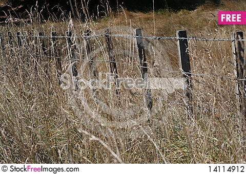 Free Barbed Wire Fence Stock Photography - 14114912