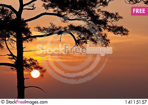Free Sunrise At Pha Nok Aen Royalty Free Stock Photography - 14115157