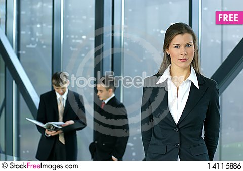 Free Young Business Colleagues Working Together Royalty Free Stock Image - 14115886