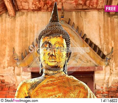 Free Long Ears Buddha1 Stock Photography - 14116822