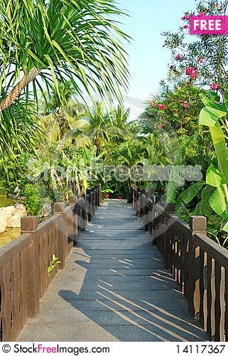 Free Backyard Royalty Free Stock Photography - 14117367