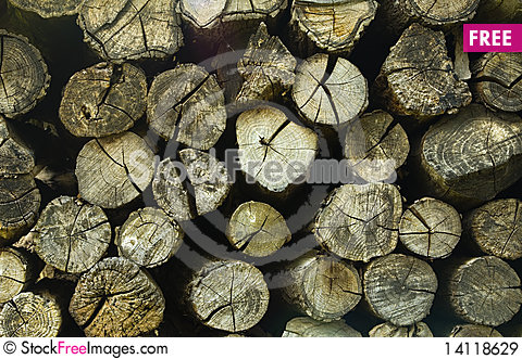 Free Wood Texture Royalty Free Stock Images - 14118629