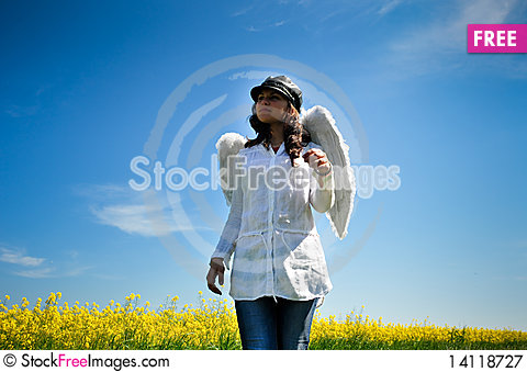 Free Angel Wings Royalty Free Stock Photography - 14118727
