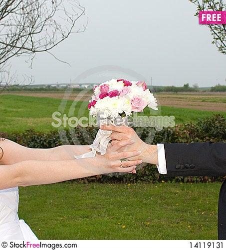 Free Wedding Game Stock Image - 14119131
