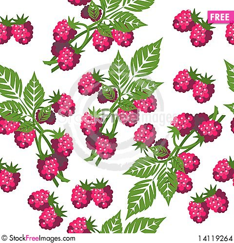 Free Seamless Ornament 310 Stock Images - 14119264