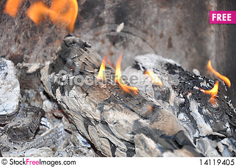 Free Burning Out Logs Royalty Free Stock Photo - 14119405