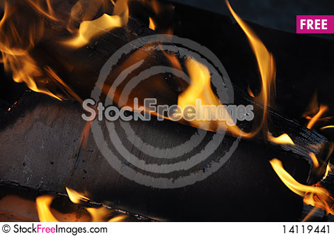 Free Burning Out Logs Stock Image - 14119441