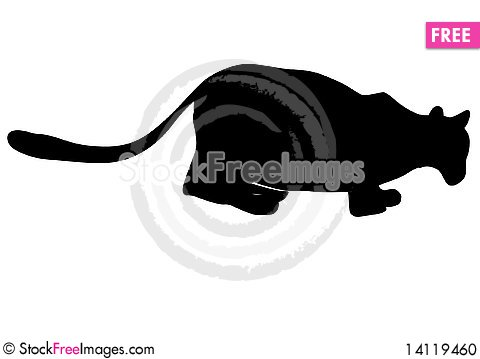 Free Silhouette Of Lioness Stock Photo - 14119460