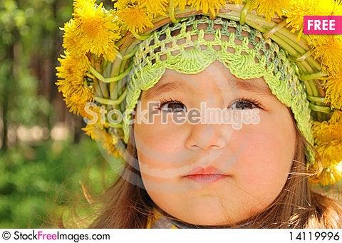Free Portrait Of A Little Girl Wearing Dandelion Diadem Royalty Free Stock Image - 14119996