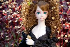 Free BJD Doll Sweet Angel Stock Image - 14111271
