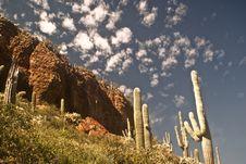 Free Desert Cliff Stock Photo - 14112650