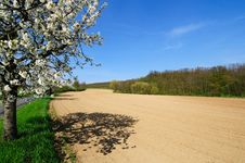 Picturesque View Of Plowed Field Stock Image