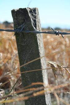 Free Barbed Wire Fence Royalty Free Stock Image - 14114936