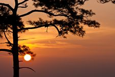 Free Sunrise At Pha Nok Aen Royalty Free Stock Photography - 14115157