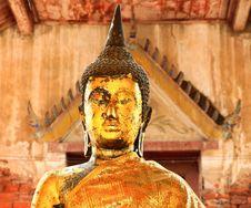 Long Ears Buddha1 Stock Photography