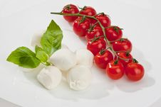 Free Mozzarella Stock Photo - 14117020