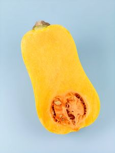 Butternut Pumpkin Stock Photography