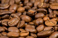 Free Coffee Beans Stock Images - 14117914