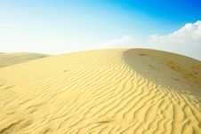 Free Dune Stock Photos - 14118563