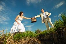 Free Wedding Couple Stock Image - 14119511