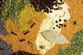 Free Seasoning Stock Image - 14120711