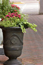 Free Colorful Flowers On City Sidewalk Royalty Free Stock Images - 14122409