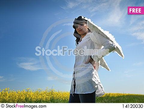Free Angel Wings Stock Photo - 14120030