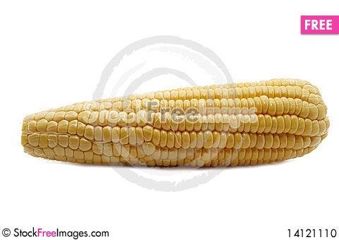 Free Corn Stock Photo - 14121110