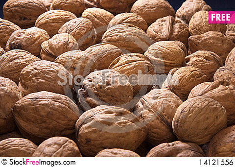 Free Dispersal Many Walnuts Royalty Free Stock Image - 14121556