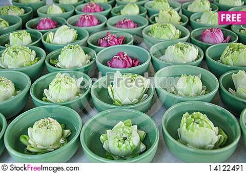 Free Lotus Flower Stock Image - 14122491