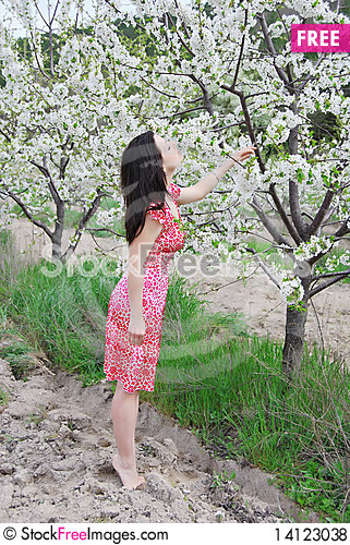 Free The Beautiful Girl In A Garden Royalty Free Stock Photos - 14123038