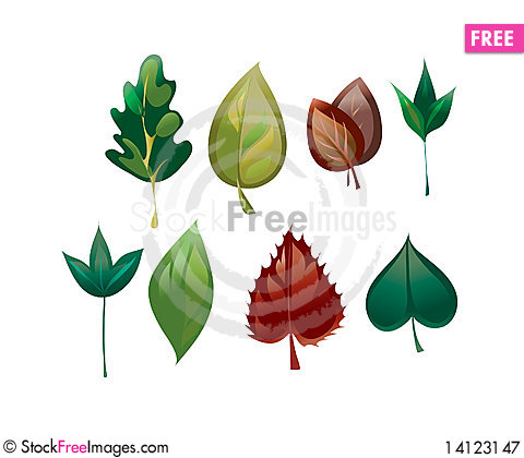 Free Leaves Royalty Free Stock Photography - 14123147