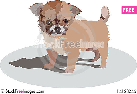 Free Puppy Royalty Free Stock Image - 14123246