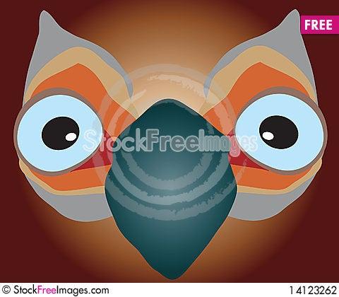 Free Big-eyed Bird Stock Photography - 14123262
