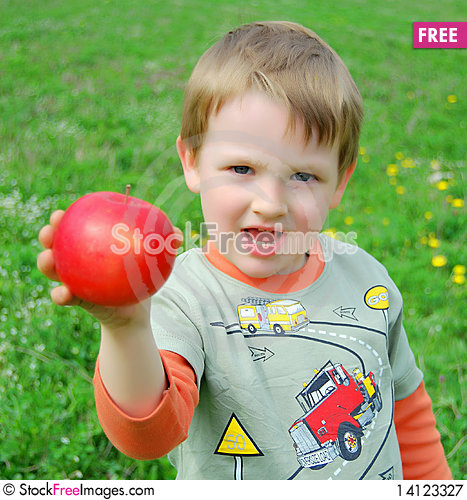 Free The Little Boy On Walk Royalty Free Stock Photography - 14123327
