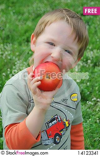 Free The Little Boy On Walk Stock Image - 14123341