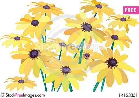 Free Yellow Camomiles Stock Image - 14123351