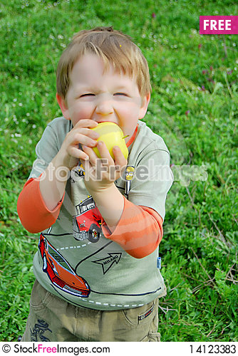 Free The Little Boy On Walk Stock Photos - 14123383