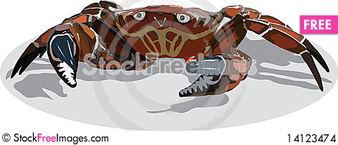 Free Crab Stock Images - 14123474